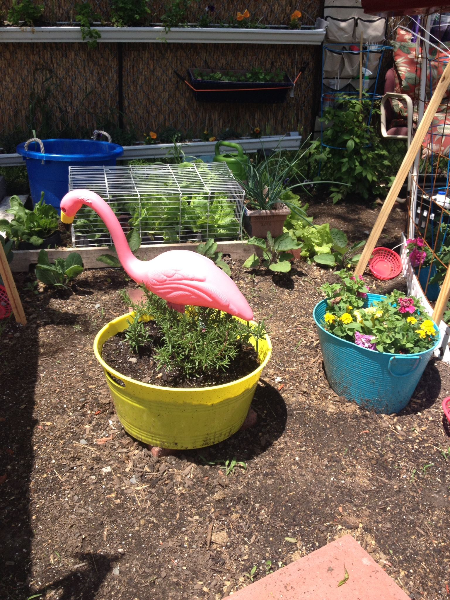 Two Planters - One Yellow Planter with a Plastic Flamingo in It, and One Blue Planter